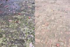 Prima-e-Dopo-pulizia-da-muschio-in-vialetto
